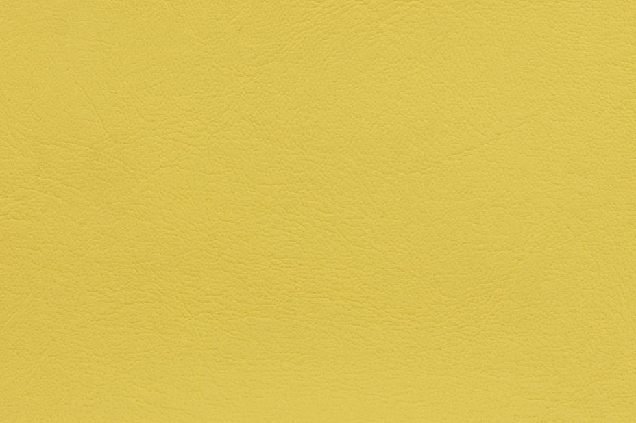VYVA - Maritime Yellow 0016